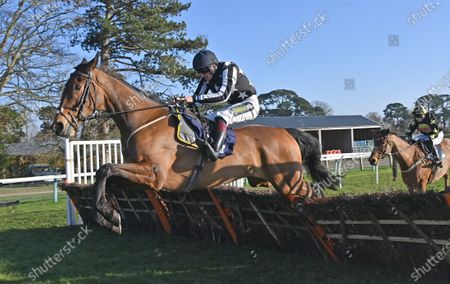 Fantastikas (Sam Twiston-Davies) takes the last on his way to winning The Champagne Piaff Novices Hurdle Race @ Fontwell Park.Photo © Hugh Routledge