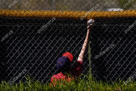 Fan Kenny Smith reaches for a ball trapped in a net during the Chicago Cubs' spring training baseball workout in Mesa, Ariz