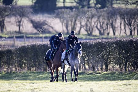 Race horses from the stables of trainer Andrew Balding exercise on the downs above Kingsclere.
