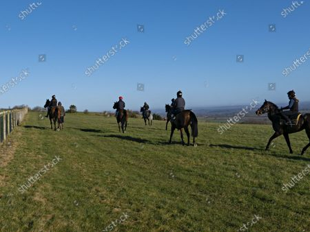 Stock Photo of Race horses from the stables of trainer Andrew Balding exercise on the downs above Kingsclere.