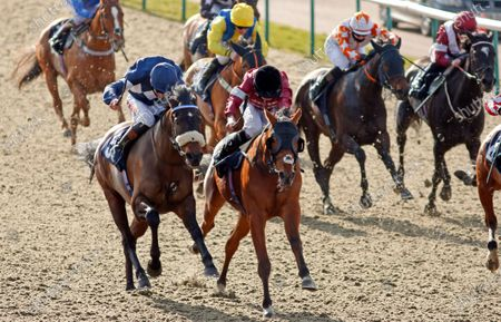 Editorial picture of Horse Racing - 27 Feb 2021