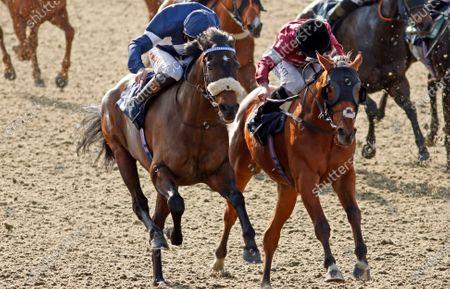 Editorial image of Horse Racing - 27 Feb 2021