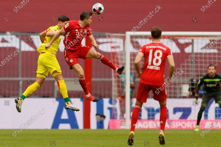 Cologne's Sava Cestic (L) in action against Bayern's Robert Lewandowski (R) during the German Bundesliga soccer match between Bayern Munich and 1. FC Koeln in Munich, Germany, 27 February 2021.