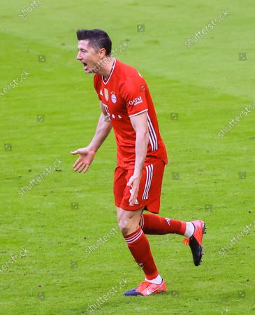 Stock Picture of Robert Lewandowski of Bayern Munich celebrates his second scoring during a German Bundesliga match between Bayern Munich and 1. FC Koeln in Munich, Germany, Feb. 27, 2021.