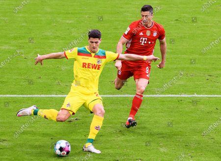 Stock Photo of Sava-Arangel Cestic (L) of Koeln controls the ball under the pressure from Robert Lewandowski of Bayern Munich during a German Bundesliga match between Bayern Munich and 1. FC Koeln in Munich, Germany, Feb. 27, 2021.