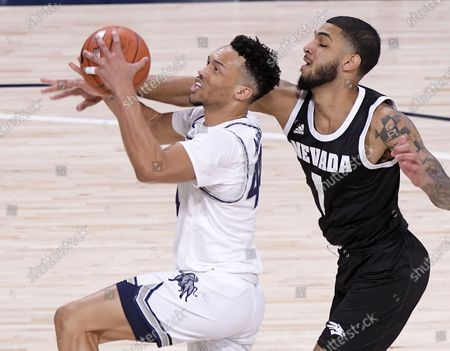 Utah State guard Marco Anthony (44) drives to the basket as Nevada forward Robby Robinson (1) defends during the first half of an NCAA college basketball game, in Logan, Utah