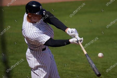 Editorial photo of Blue Jays Yankees Baseball, Tampa, United States - 28 Feb 2021