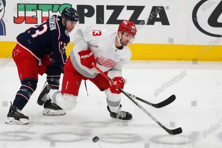 Stock Photo of Columbus Blue Jackets' Cam Atkinson, left, and Detroit Red Wings' Darren Helm chase a loose puck during the third period of an NHL hockey game, in Columbus, Ohio