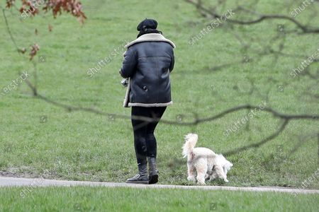 Stock Photo of Daisy Lowe walking her dog Monty in Primrose Hill