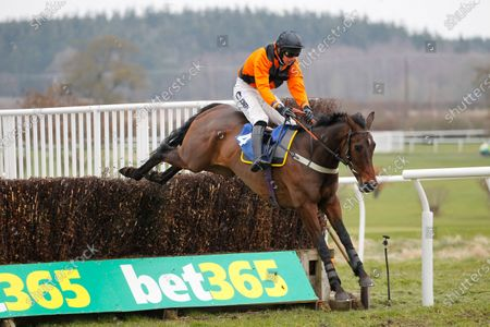 Cedar Hill and Ryan Mania win the Bet365 Cyril Alexander Memorial Novices' Chase at Kelso.