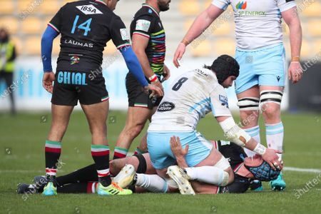 Ryan Wilson - Glasgow Warriors number 8 gets into a scrap with a Zebre forward.