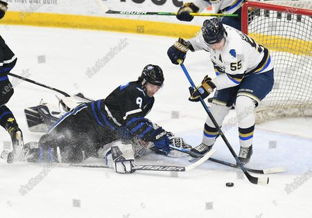 Fargo Force Jeremy Davidson (8) ends up on top of Sioux Falls Stampede goalie Trent Burnham (35) while Sioux Falls Stampede Garrett Sundquist (55) clears the puck during a USHL game between the Sioux Falls Stampede and the Fargo Force at Scheels Arena in Fargo, ND