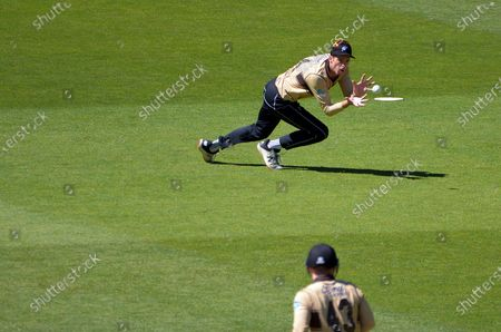 Stock Image of NZ's Mitch Santner catches Aaron Finch during the 5th international men's T20 cricket match between the New Zealand Black Caps and Australia at Sky Stadium.