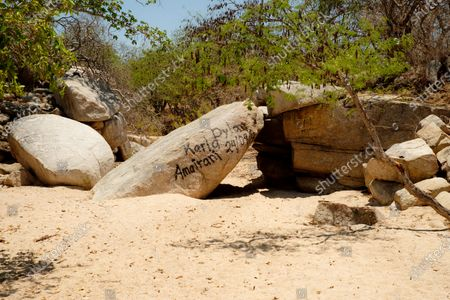 Travel photos documenting the flora and fauna of Baja, Baja California Peninsula, Mexico