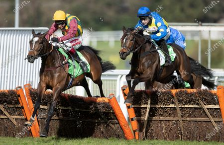 Stock Image of The winner Langer Dan (Harry Skelton,right) jumps the final flight and beats Miss Heritage (Richard Johnson) in the Imperial CupSandown 13.3.21 Pic: Edward Whitaker