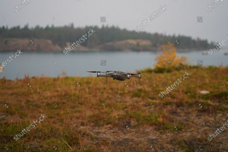 Stock Photo of Natural landscapes and details, Northwest, United States, USA