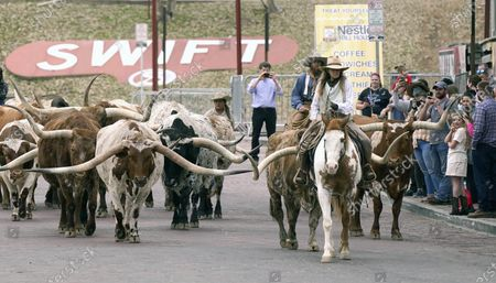 Spectators watch a cattle drive demonstration at the Fort Worth Stockyards, in Fort Worth, Texas. Gov. Greg Abbott allowed the state mandates for COVID-19 safety measures to expire so the public can forgo masks in public