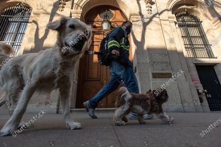 A person walks their dogs past the townhouse of financier Jeffrey Epstein, one of the largest private homes in Manhattan. The seven-story residence is at 9 East 71st Street, between Fifth and Madison Avenues.