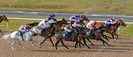 BORN TO BE ALIVE (Clifford Lee) beats ON A SESSION (10) RISE HALL (8) and THE GILL BROTHERS (11) in The Bombardier British Hopped Amber Beer Lincoln Trial Handicap Wolverhampton