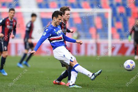 """Antonio Candreva (Sampdoria)Andreas Skov Olsen (Bologna)        during the Italian """"Serie A"""" match between Bologna 3-1 Sampdoria  at  Renato Dall Ara Stadium in Bologna, Italy."""