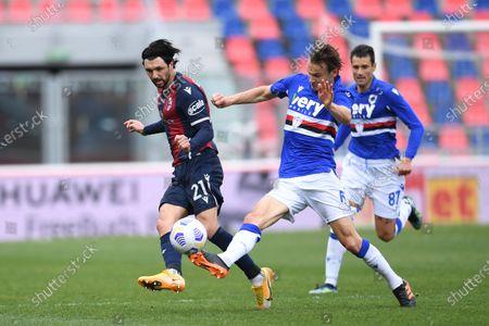"""Roberto Soriano (Bologna)Albin Ekdal (Sampdoria)Antonio Candreva (Sampdoria)        during the Italian """"Serie A"""" match between Bologna 3-1 Sampdoria  at  Renato Dall Ara Stadium in Bologna, Italy."""