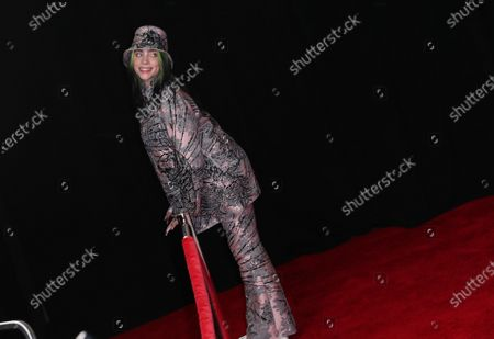Billie Eilish on the red carpet at the 63rd Annual Grammy Awards, at the Los Angeles Convention Center, in downtown Los Angeles, CA