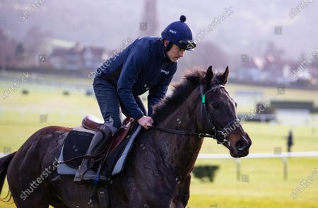 Stock Photo of CHELTENHAM Ruby Walsh on Koshari trained by Willie Mullins.