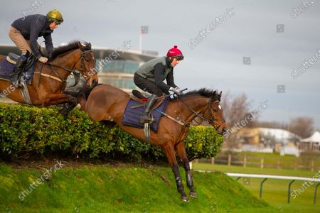 Stock Photo of CHELTENHAM. TIGER ROLL jumping the bank with rider Keith Donaghue during exercise this morning