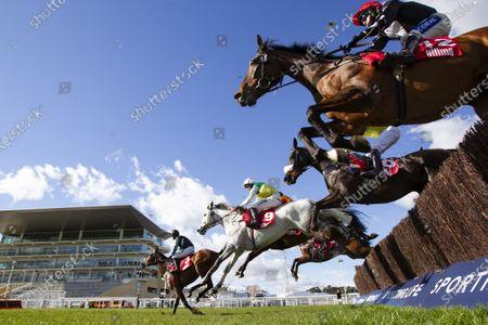 CHELTENHAM. Ultima Handicap Chase WINNER Vintage Clouds ( grey horse) Jockey Ryan Mania TRAINER Sue Smith
