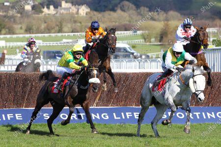 Editorial photo of Horse Racing - 16 Mar 2021