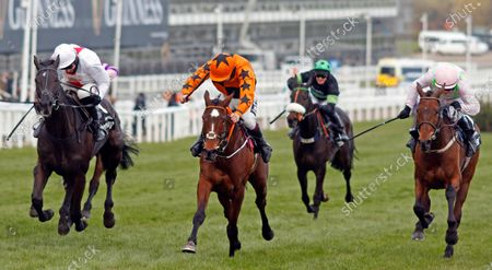PUT THE KETTLE ON (centre, Aidan Coleman) beats NUBE NEGRA (left) and CHACUN POUR SOI (right) in The Betway Queen Mother Champion Chase Cheltenham