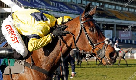 SKY PIRATE (Nick Scholfield) after The Johnny Henderson Grand Annual Challenge Cup Cheltenham