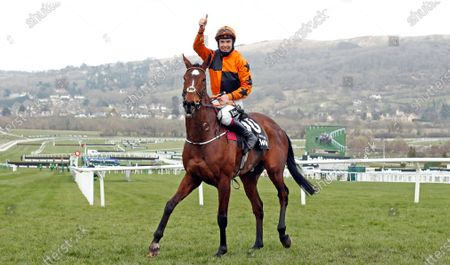 PUT THE KETTLE ON (Aidan Coleman) after winning The Betway Queen Mother Champion Chase Cheltenham
