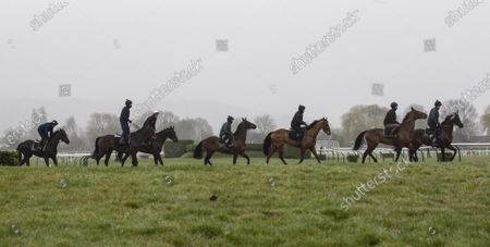 Stock Image of CHELTENHAM. Willie Mullins horses and riders arrive on the gallops. Al Boum Photo and Ruby Walsh second from last
