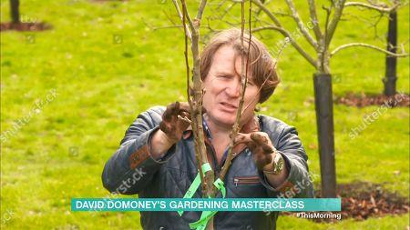 David Domoney