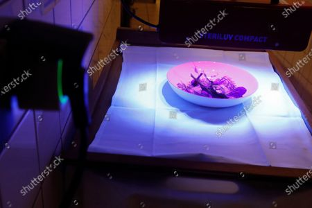 Stock Photo of Dish is pictured under an ultraviolet scanning device used as a test to insure Covid-free food, at the Maison des Tetes restaurant in Colmar, eastern France. Chef Eric Girardin is working on a Covid-free restaurant as the French government announced Thursday a patchwork of new restrictions while reducing the national curfew by one hour. Restaurants, bars, cinemas, gyms, museums, theaters and concert halls have been shut down for almost five months, and will remain closed