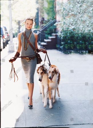 Stock Picture of Woman in gray sleeveless knit turtleneck dress with brown leather accessories walking a pair of collie dogs on a leash down the street. Dress, Lauren by Ralph Lauren. Necklaces, Roxanne Assoulin for Lee Angel. Gloves, Carolina Amato. Bag, Hogan. Belt, Red Monkey Designs. Shoes, Delman.