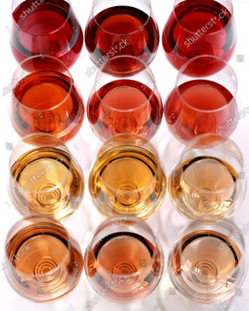 Four rows, twelve glasses total, of glasses of various rose wines.