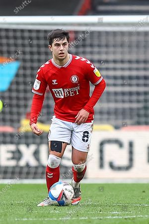 Stock Photo of Bristol City's Liam Walsh (8) in action during the EFL Sky Bet Championship match between Bristol City and Rotherham United at Ashton Gate, Bristol