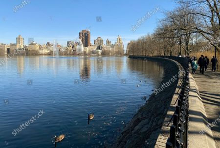 Two ducks (L) are seen swimming in the water as people (R) walking around the Jacqueline Kennedy Onassis Reservoir in Central Park in New York, USA, 21 March 2021.