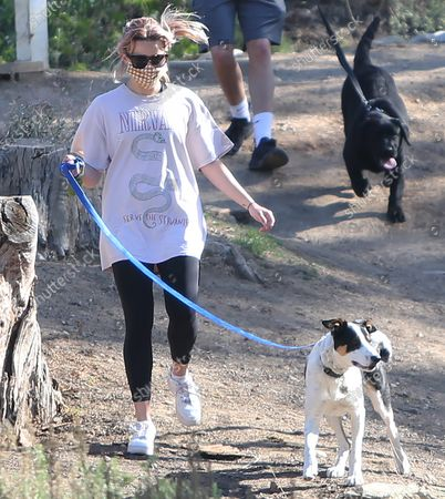 Stock Picture of Ava Elizabeth Phillippe wakling the dogs while hiking