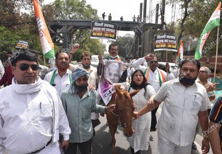 Delhi Congress workers, demonstration to protest against the new excise policy and including lowering of drinking age from 25 to 21 years, Congress against the promotion of liquor sales to help the liquor mafia in profiteering by the Delhi Government, led by DPCC president Ch. Anil Kumar, Near the residence of the Chief Minister Arvind Kejriwal at Civil Lines on March 24, 2021 in New Delhi, India.