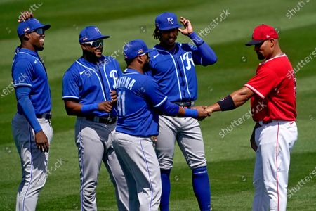 From left; Kansas City Royals' Jorge Soler, Hanser Alberto, Adalberto Mondesi and Carlos Santana (41) smile as they greet Los Angeles Angels' Albert Pujols prior to a spring training baseball game, in Tempe, Ariz