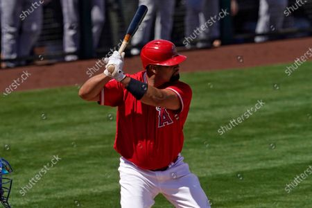 Los Angeles Angels' Albert Pujols during a spring training baseball game against the Kansas City Royals, in Tempe, Ariz