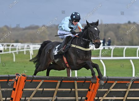 Stock Picture of Across The Channel (Richard Johnson) takes the last on the first circuit before going on to win The Irish Thoroughbred Marketing Novices Hurdle Race. Photo © Hugh Routledge