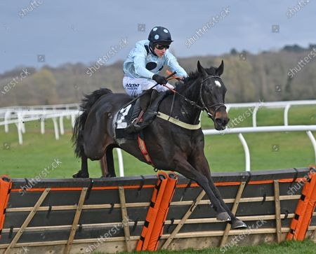 Across The Channel (Richard Johnson) takes the last on the first circuit before going on to win The Irish Thoroughbred Marketing Novices Hurdle Race. Photo © Hugh Routledge