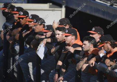 Stock Picture of Pacific players look on during an NCAA baseball game against San Diego on in San Diego