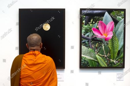 A Thai Buddhist monk visits the 'Life @ Home' Royal photo exhibition at the BACC (Bangkok Arts and Culture Center) in Bangkok, Thailand, 30 March 2021. The Royal exhibit showcases photographs taken by Thai Princess Maha Chakri Sirindhorn, mostly focusing on daily life, nature and animals. The exhibition runs until 18 April 2021.
