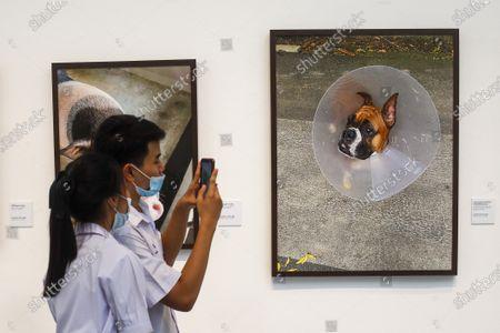Editorial photo of Exhibition of photographs by Thai Princess Sirindhorn in Bangkok, Thailand - 30 Mar 2021