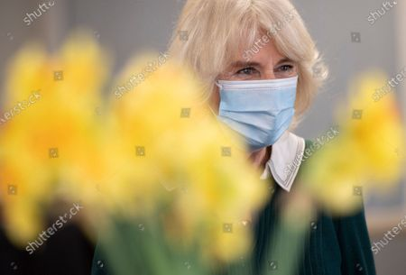 Britain's Camilla Duchess of Cornwall thanked unsung frontline workers during a visit to Kamsons Pharmacy head office and warehouse, in East Sussex, England, . The Duchess of Cornwall is visiting to thank frontline coronavirus workers